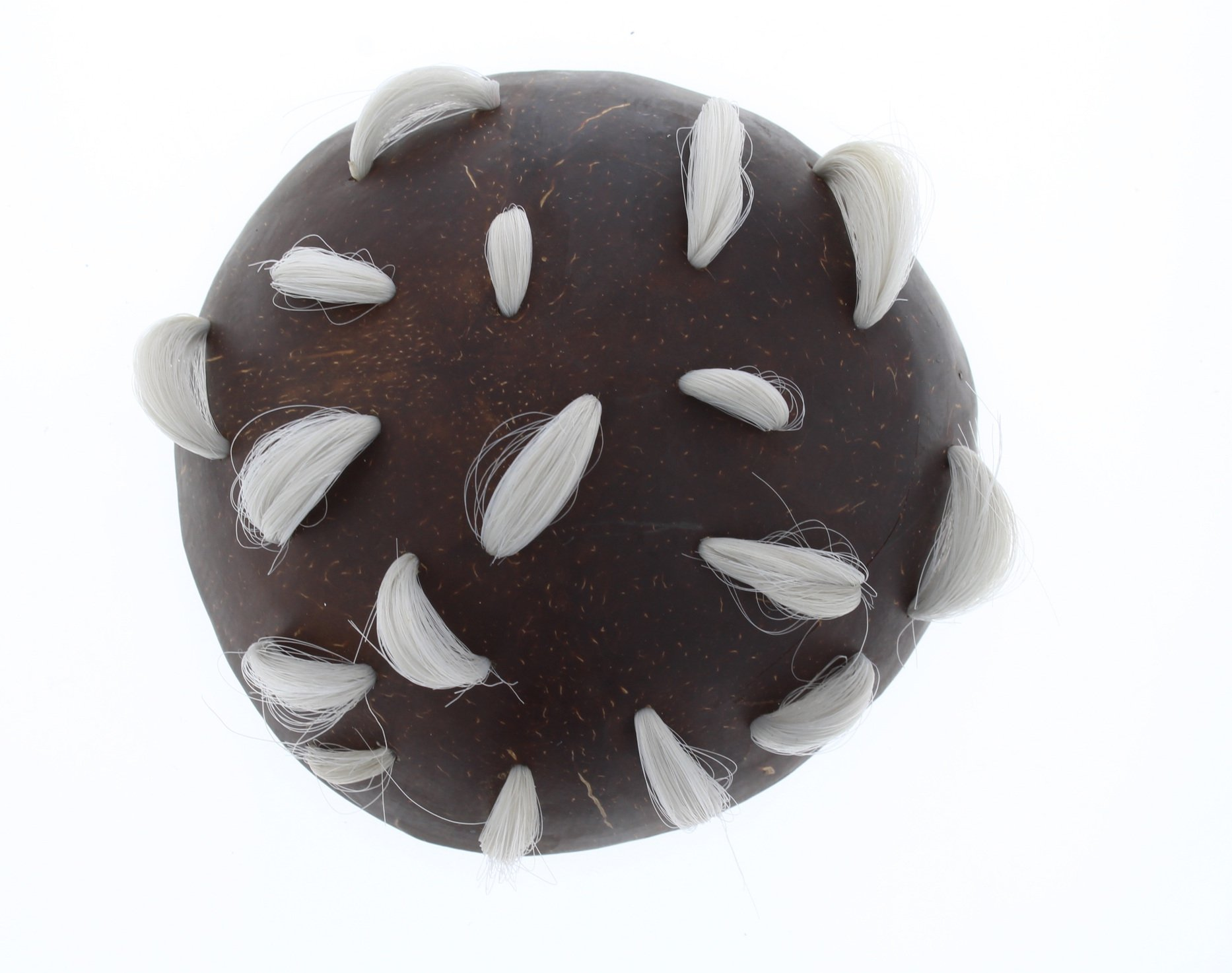 A circular brooch made from half a coconut shell, photographed from above. On the surface, white hair has been woven so it loops at intervals out of the shell.