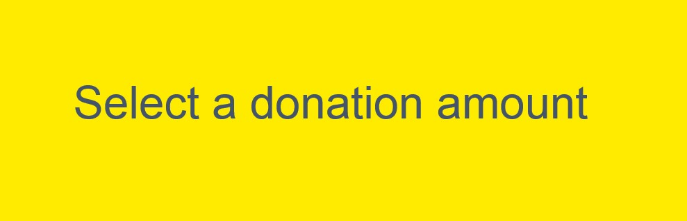 select a donation amount; links to next page