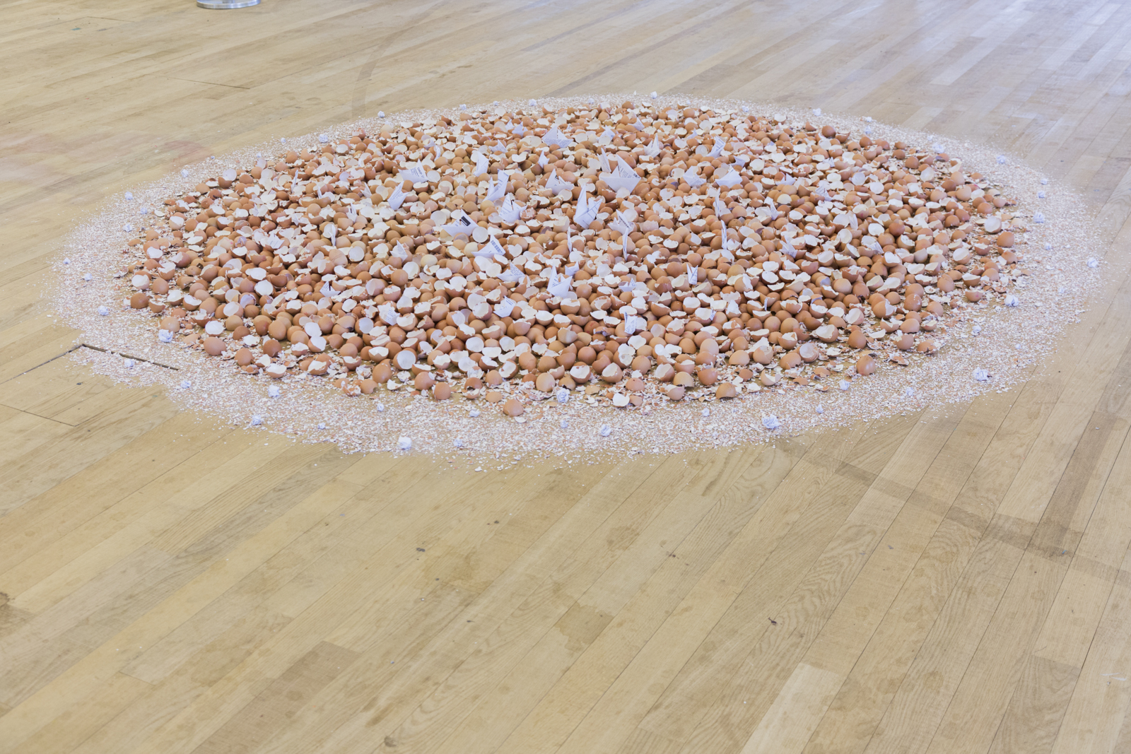 circle of broken eggshells at tate exchange, artworks are of from the Shortlist 2017