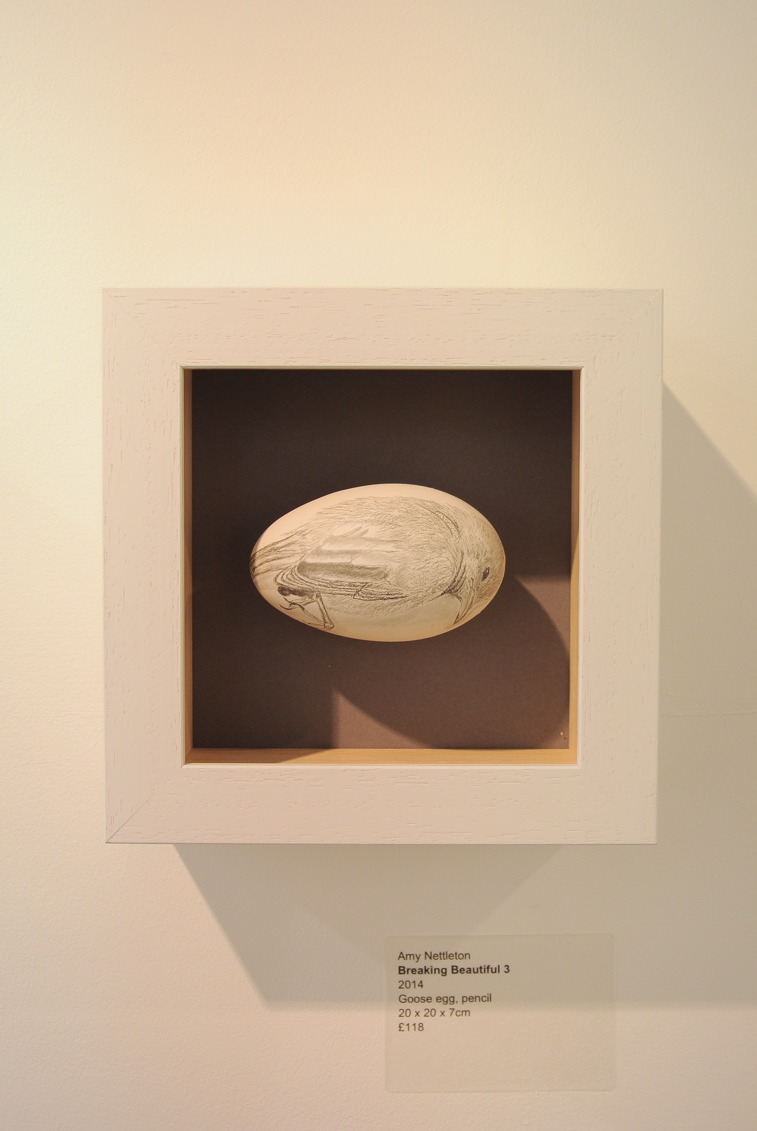 Breaking Beautiful 3, by Amy Nettleton, image of a bird drawn on egg inside a box