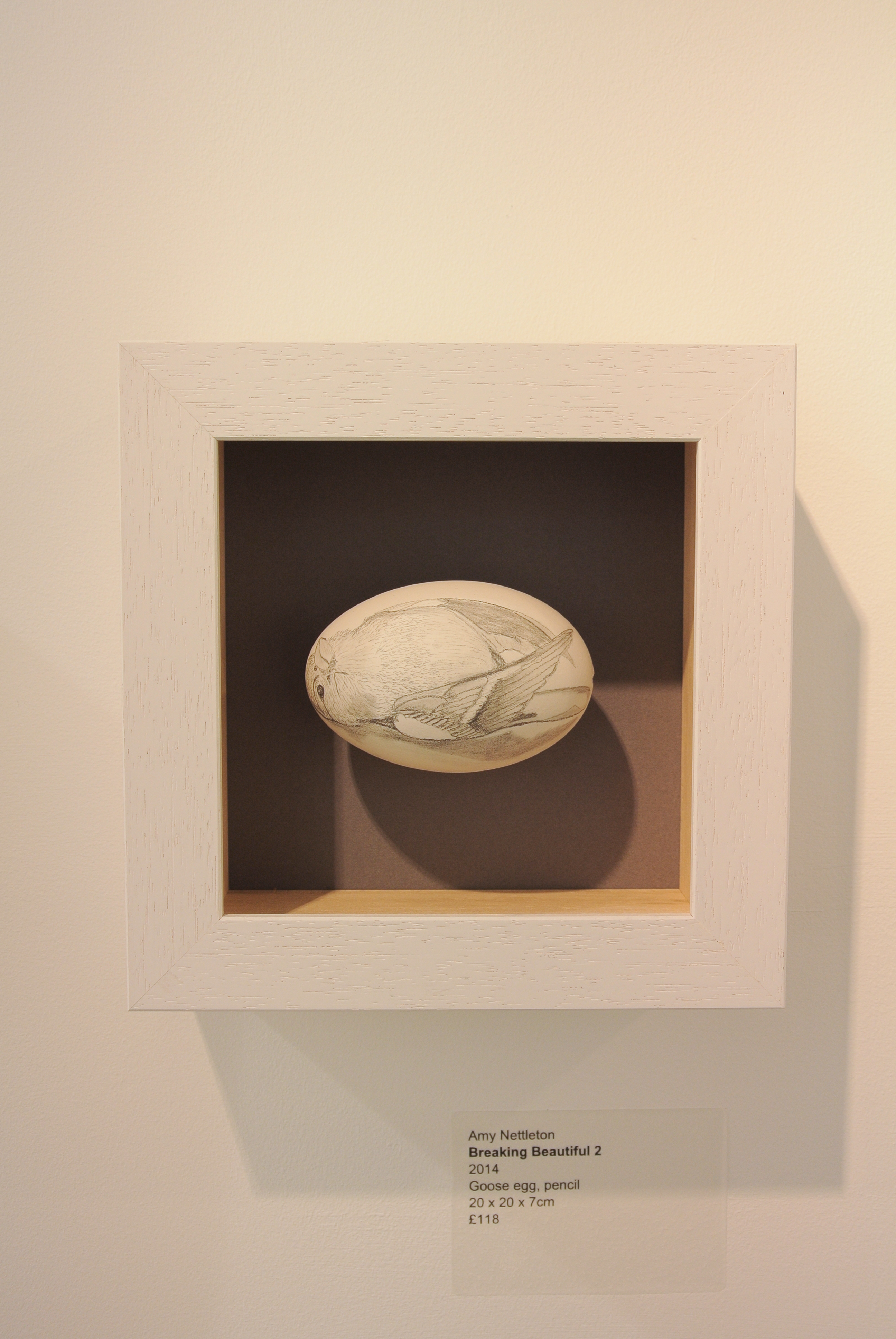 Breaking Beautiful 2, by Amy Nettleton, image of a bird drawn on egg inside a box