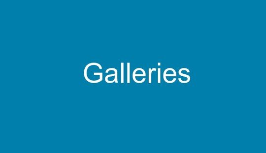 accessible galleries