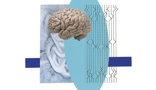 Light blue, dark blue and black 2d shape and black line graphic image with a photograph of a human brain near the middle of the image