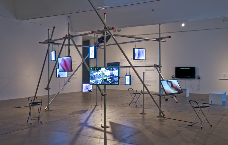 A scaffolding structure suspends multiple screens.